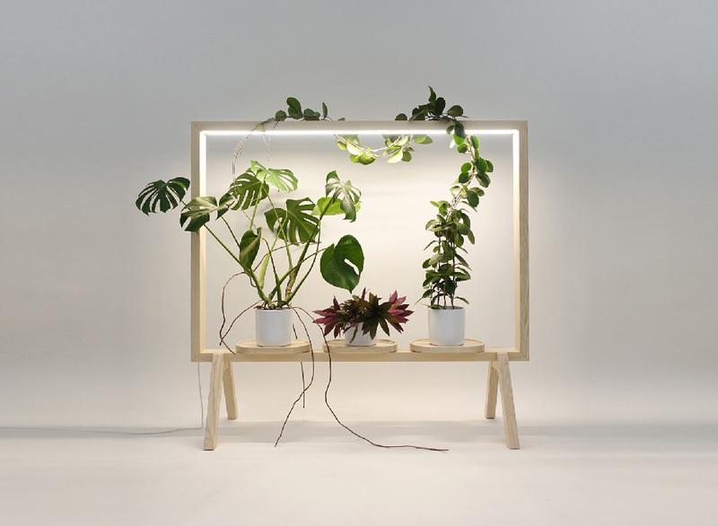 Portavaso in legno luminoso