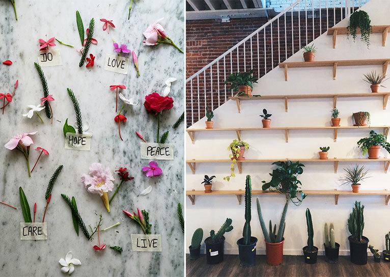 Giardini verticali, tante idee