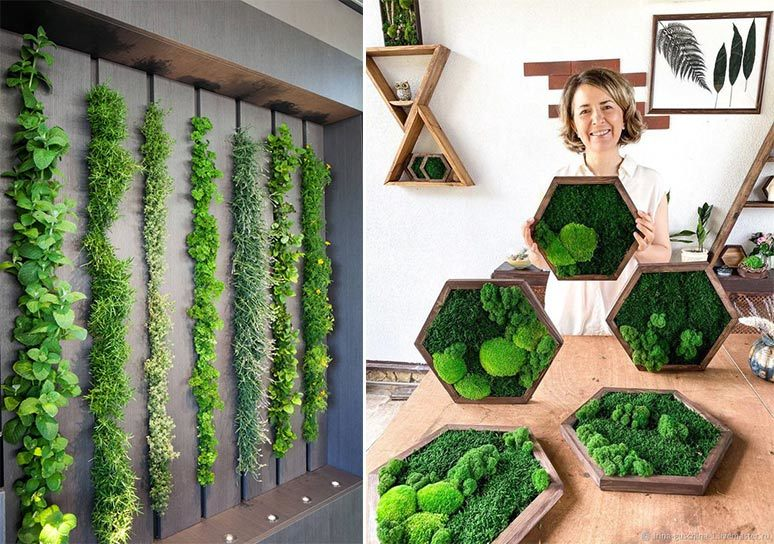 Giardini verticali per interni, casa sostenibile